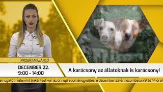 Programajánló / TV Szentendre / 2018.12.20.