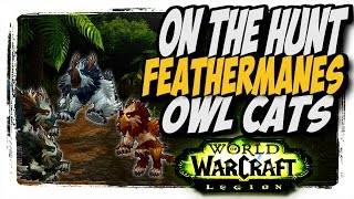"""Feathermanes Owlcats!! Common to Rare hunter pets """"On The Hunt"""" WoW Legion patch 7.2"""