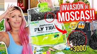 PLAGA DE MOSCAS INVADE MI CASA!!!😱 AYUDAAA!!!🤮 | 20 Jul 2021