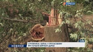 Cтрілянина і бійка: у Протасовому Яру почали вирубку дерев