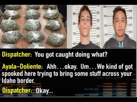 Drug Traffickers Get High & Call The Cops To Turn Themselves In