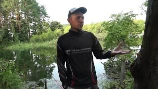 Рыбалки в киеве обл озера для