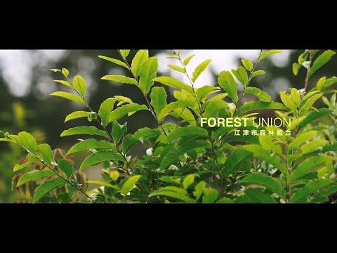 【江津市林業事業体PR動画】江津市森林組合