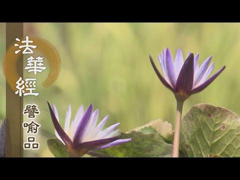 【靜思妙蓮華】法華經譬喻品 - 三觀空有 行菩提道 - 20201202 第577集