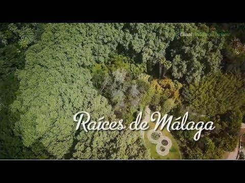 Montes de Málaga, raíces de Málaga. Málaga