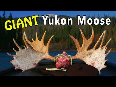 Kanadský Yukon