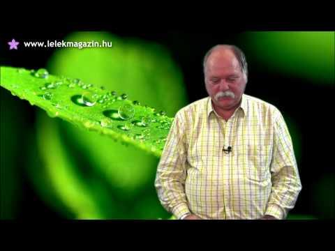 Féregparazita példák