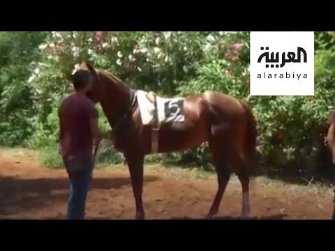 العرب اليوم - شاهد: سباق الخيل في بيروت يعود للعمل بلا حماسة