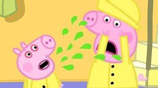 Świnka Peppa | George siê przeziebil | Bajki Po Polsku | Peppa po Polsku