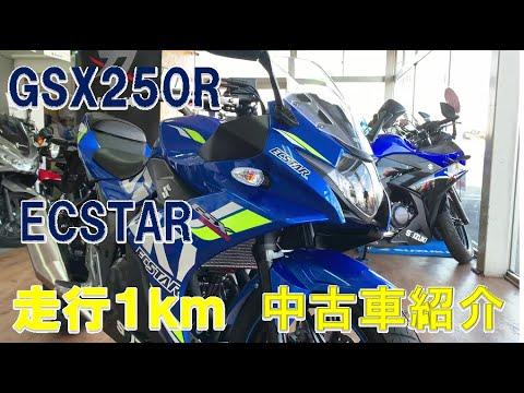GSX250R/スズキ 250cc 群馬県 SBS伊勢崎西馬似駆屋