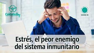 Estrés, el peor enemigo del sistema inmune
