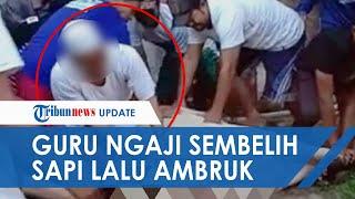 POPULER: Video Guru Ngaji Meninggal saat Sembelih Hewan Kurban, Jatuh Lemas dan Masih Pegang Golok
