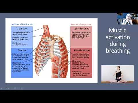 Kaip padidinti kraujospūdį sergant hipertenzija
