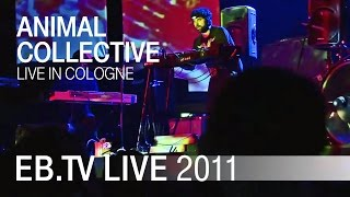 Animal Collective live in Cologne (2011)