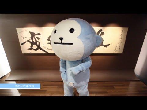 恋するフォーチュンクッキー ひかりTV STAFF Ver. /
