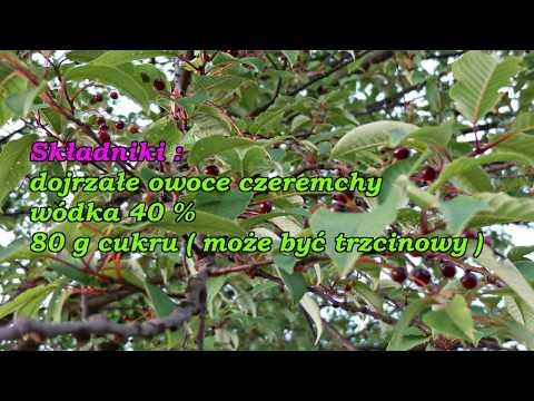 Herbatki ziołowe z żylakami