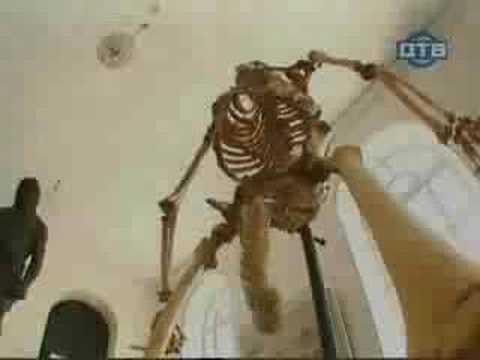 Krasnojarsk die Klinik die Operation warikos