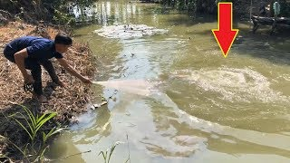 Top 3 Most Unbelievable Cast Net Fishing River Monsters