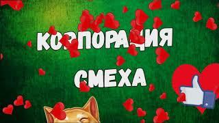 Best COUBE #4   Лучшие приколы и кубы!