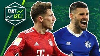 Fakt ist..! Bayern & BVB siegen! Stuttgarts Enttäuschung! Bundesliga Rückblick 18. Spieltag 18/19