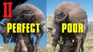 How To Determine The Quality Of An Animal When Hunting | Red Dead Redemption 2