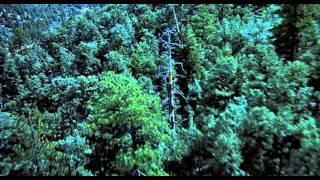 Trailer of E.T. l'extra-terrestre (1982)