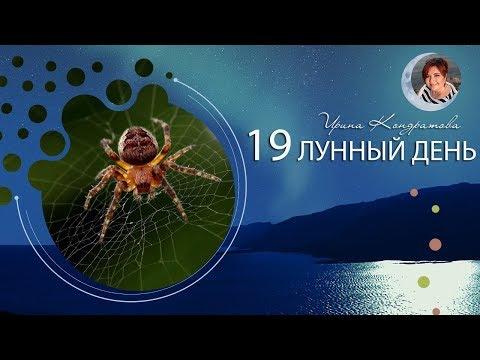 19 лунный день - что делать?  11.02 с 19.55 Советы на каждый лунный день ✦ Астролог Ирина Кондратова