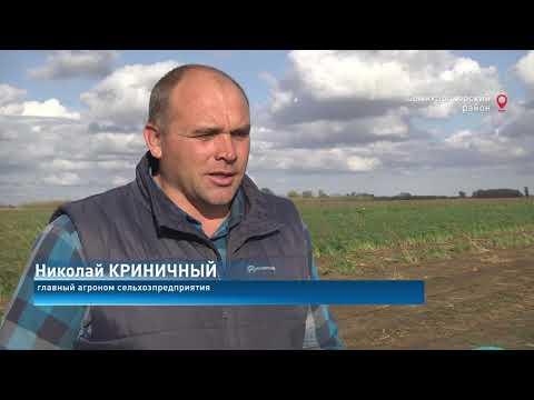 Новости-на-Дону от 05.11.2020 -