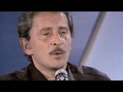 Immagine testo significato Meraviglioso (live@rsi 1981)