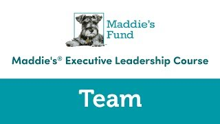 Maddie's Executive Leadership Course: Team