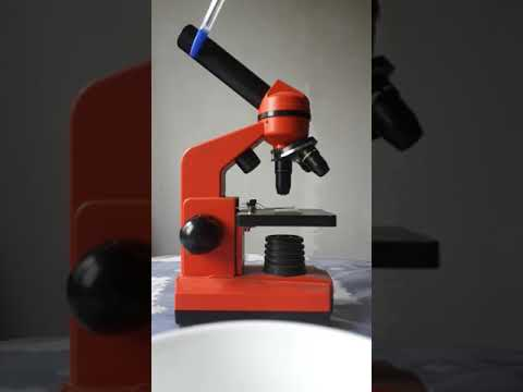 Устройство и работа микроскопа.
