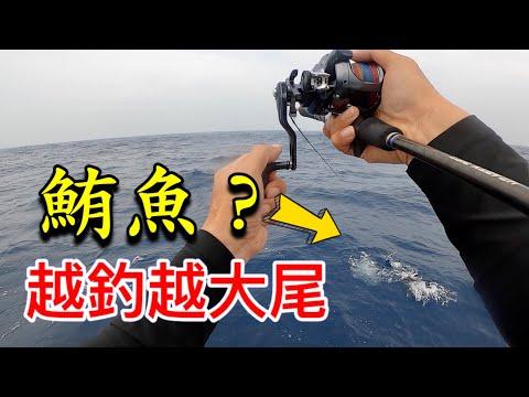 兩人包船來去南台灣找口感不輸黑鮪魚的生魚片食材,狂咬就算了!越釣越大尾!!#赫馬士#釣魚#TUNA