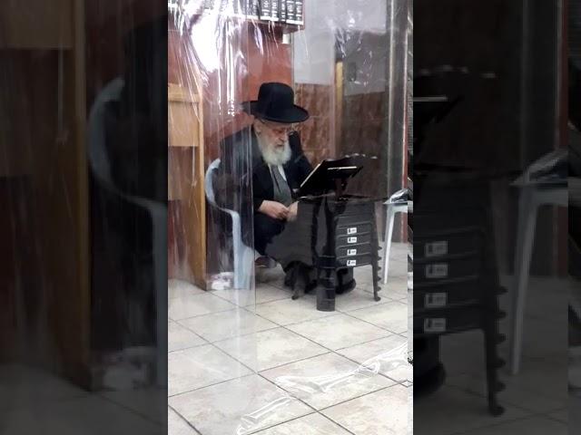 צפו בתיעוד: מרן הראשון לציון הגאון הרב יצחק יוסף באמירת הקינות