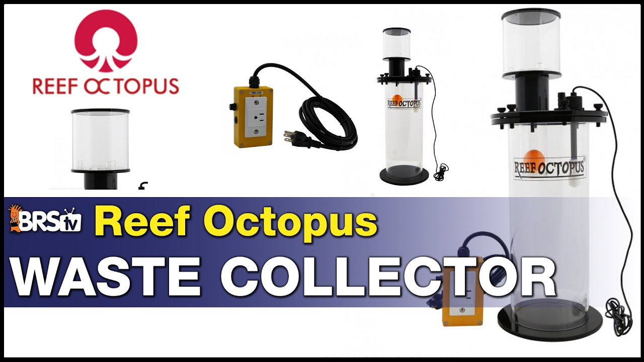 Reef Octopus Waste Collector: It stores fish-poo and shuts off your skimmer. Pretty sweet!