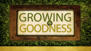 Growing In Goodness