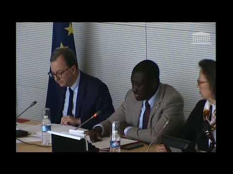Présentation du rapport d'information sur l'OMC et la Politique commerciale de l'Union européenne