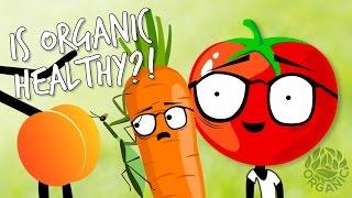 Kenali Serba-Serbi Seputar Makanan Organik Dengan Melihat Video Ini