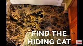 Can you See the Cat in this Picture | Wheres the Cat | find the cat puzzle answer | Photo of Cat