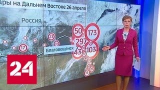 Погода шимановск амурская область на 10 дней