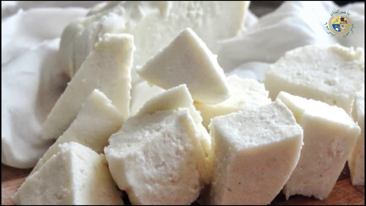 Cheese Mozzarella Preparation