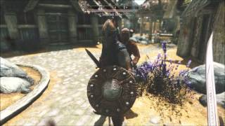 The Elder Scrolls V Assassin's Creed Mod