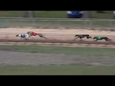 RACE 33