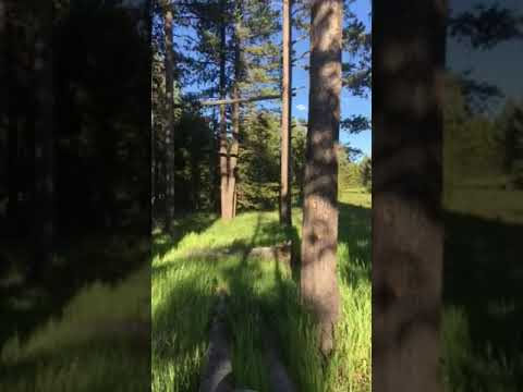 Video Of Backcountry site 4G7 at Wolf Lake, WY