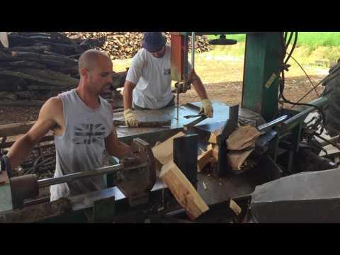 Carpino vs faggio vs rovere legna da ardere trotti 07/17