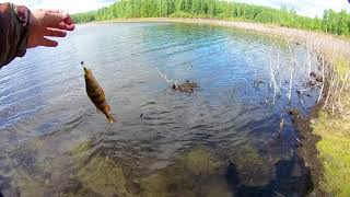 Рыбалка в челябинской области оз аргази