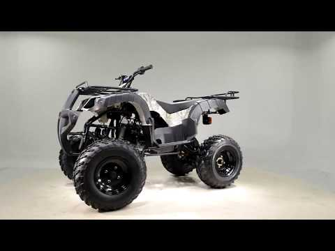 2017 Tao Motor 150cc Full Size Hunting -BULL in Jacksonville, Florida - Video 1