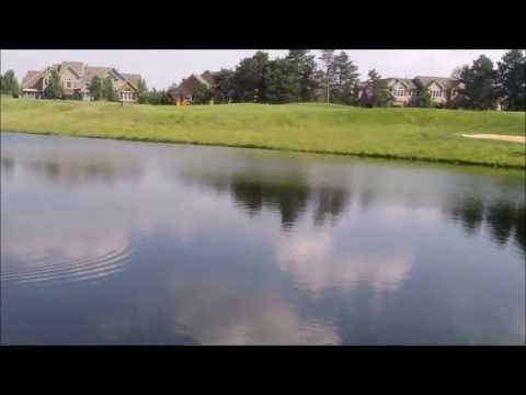 Golf Course Pond Bass fishing w/ hatcam