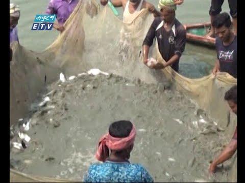 মাছ চাষ করে সফল উদ্যোক্তা গফরগাঁওয়ের গৃহবধু সালমা আক্তার