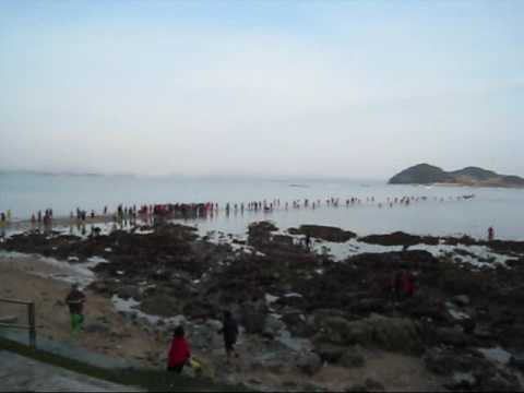 摩西的奇蹟 韓國珍島靈登節 Mystic Sea Road Festival
