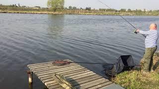 Рыбалка в лагуне игумново д дурниха
